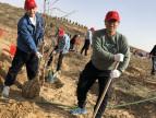榆林环境保护工程有限责任公司开展义务植树活动